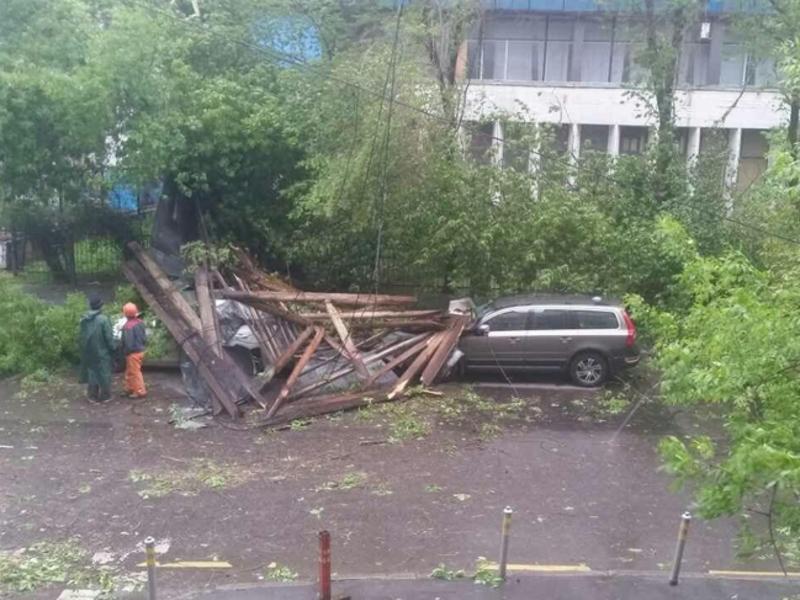 Из-за сильного ветра москвичей просят парковаться подальше от деревьев