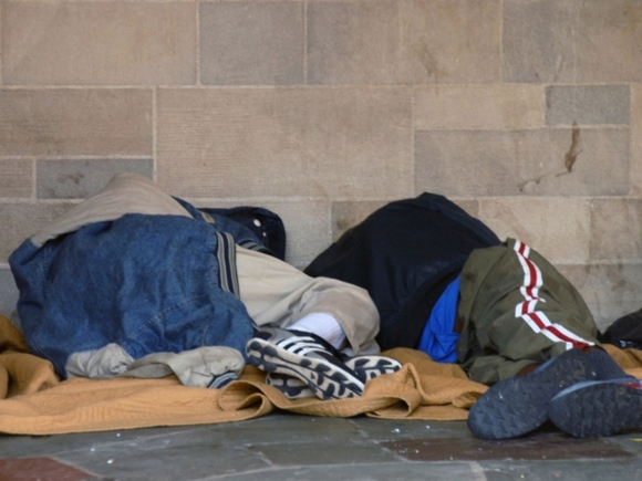 ВКрасноярске бездомные кормили брошенную напомойке 9-месячную девочку