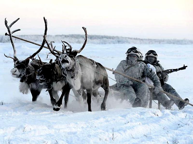 Полярники Канады нацелились на поиск данных о государственной принадлежности Арктики