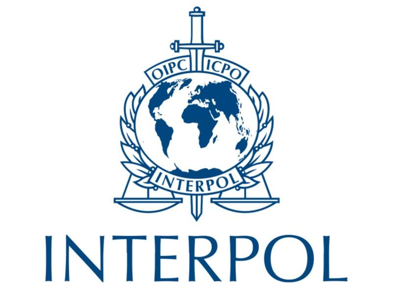 МИД: Москва запросила Интерпол о нахождении предполагаемого шпиона Смо