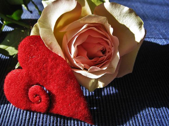В День святого Валентина библиотеки дадут шанс найти свою любовь