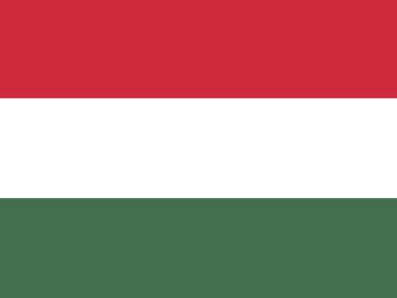 В Венгрии схватили палача ИГ в Сирии