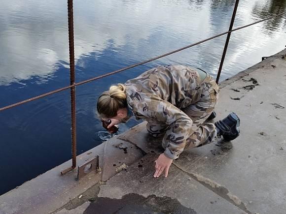 ВВоронежском заповеднике выявлены следы инсектицида ДДТ