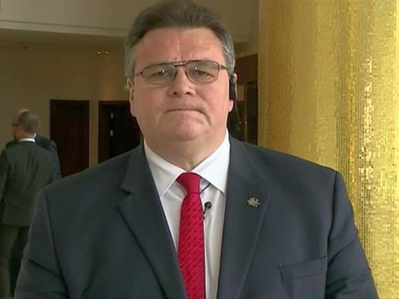 Руководитель МИД Литвы: Польша неимеет права присваивать литовский символ