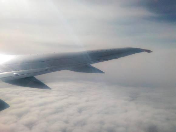 Пассажирам «Вим-Авиа» на16 часов задержали вылет изПулково вБолгарию