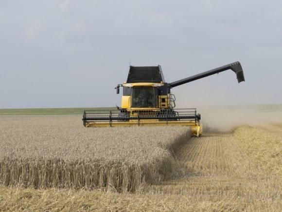 Запасы зерна к1сентября увеличились на15,1%