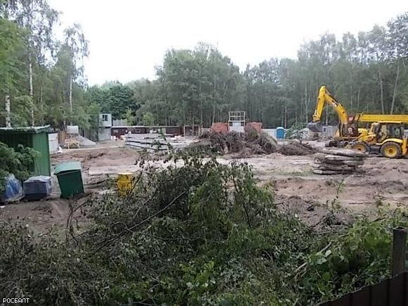 ВПетербурге возобновили стройку около парка Александрино