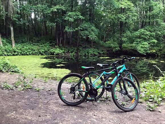 В Гатчинском районе Mitsubishi Lancer насмерть сбил велосипедиста и скрылся