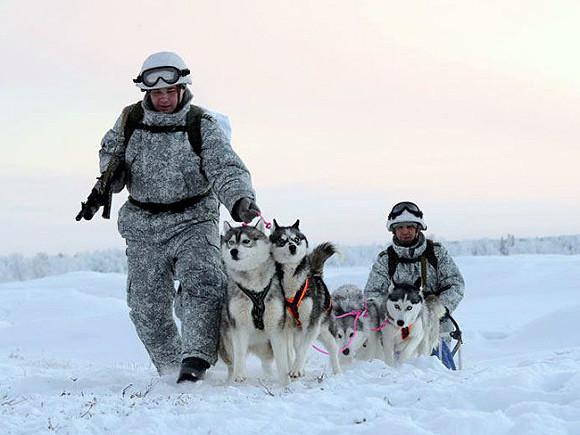 НАТО: Количество военного присутствия Российской Федерации вАрктике возросло