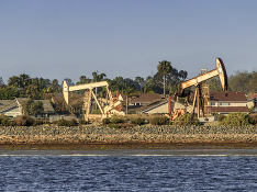 Нефть Brent слегка дорожает, WTI теряет в цене