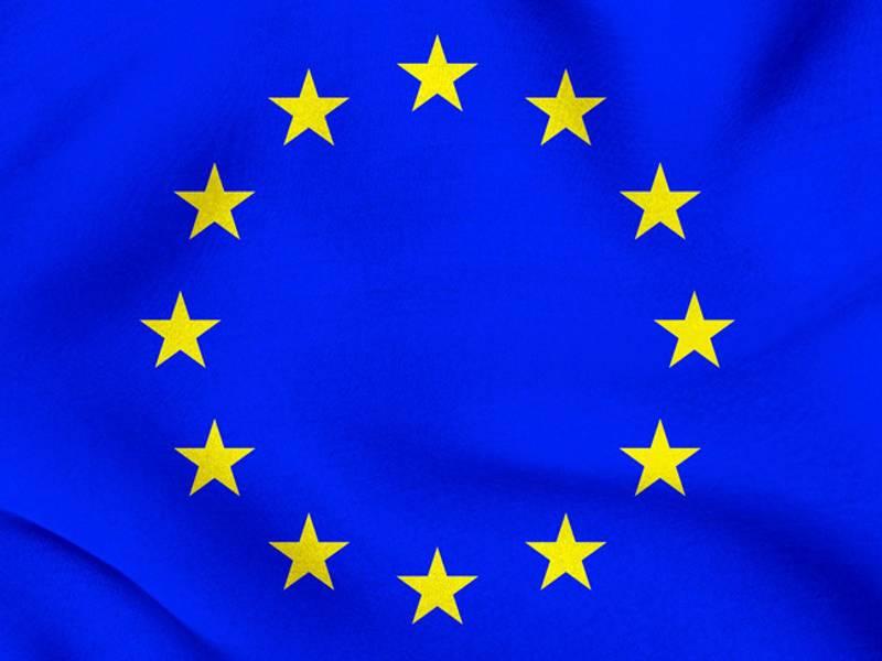 СМИ: ЕС исключит из санкционного списка двоих экс-министров Януковича