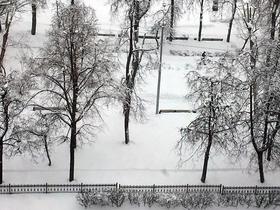 Фото Натальи Станэску, ИА «Росбалт»