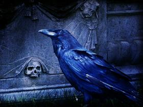Почему смерти знаменитостей превращаются в охоту на ведьм?