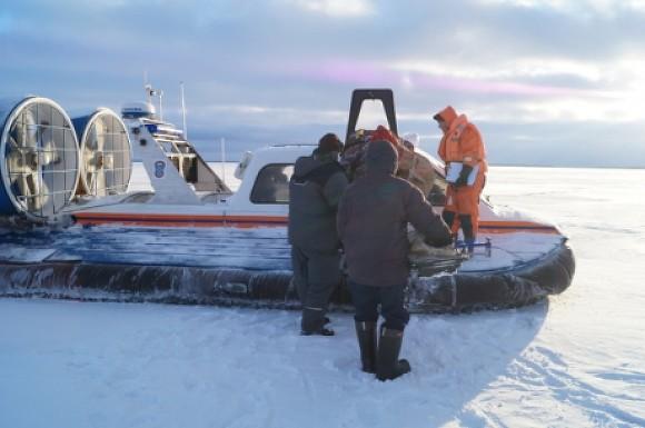21 рыбака сняли сольдины вФинском заливе