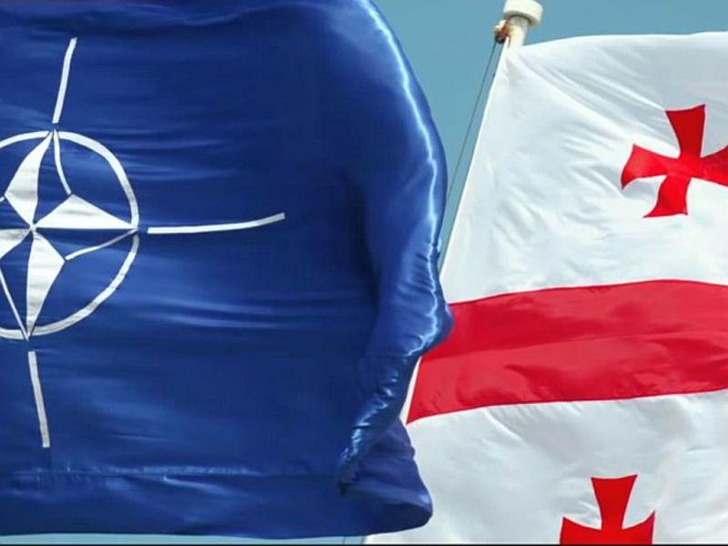 В Грузии приняли резолюцию о вступлении в ЕС и НАТО