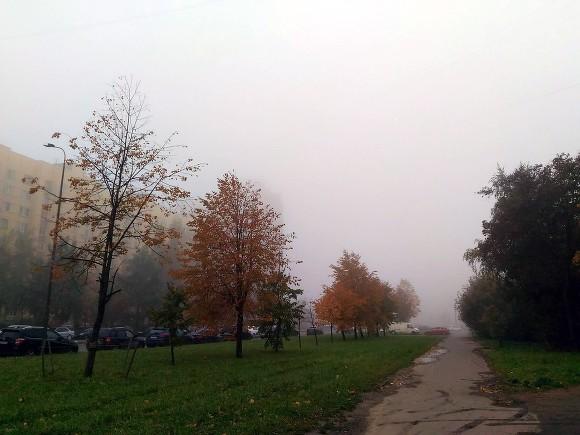 Напроспекте Славы две маршрутки столкнулись из-за густого тумана