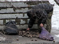 """Россию травят санкциями, но малые дозы """"яда""""  рядовых россиян мобилизуют"""