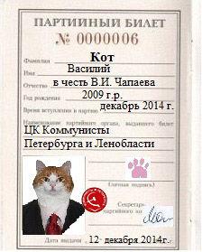 Как сделать документы на кот