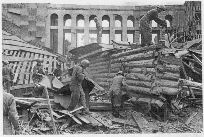 Фото из архива Ленинградского зоопарка