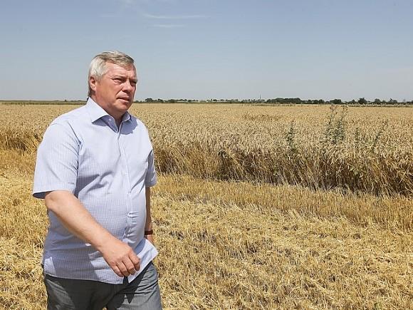 Ростовская область заняла первое место в России по экспорту сельхозпродукции