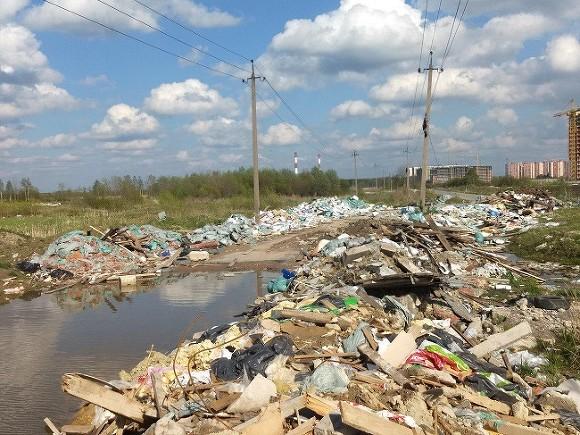 Фото предоставила инициативная группа жителей «Бугры47»