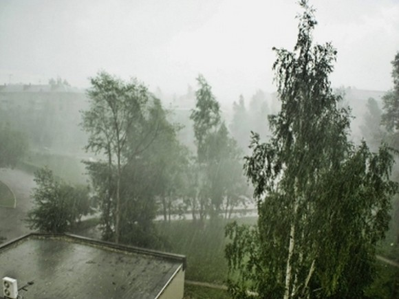 Граждан  столицы предупредили оливнях ишквалистом ветре