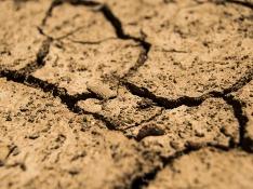 Предприятие в Саратовской области заплатит почти 1,5 млн рублей за загрязнение почвы