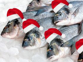 У рыбы тоже Новый год