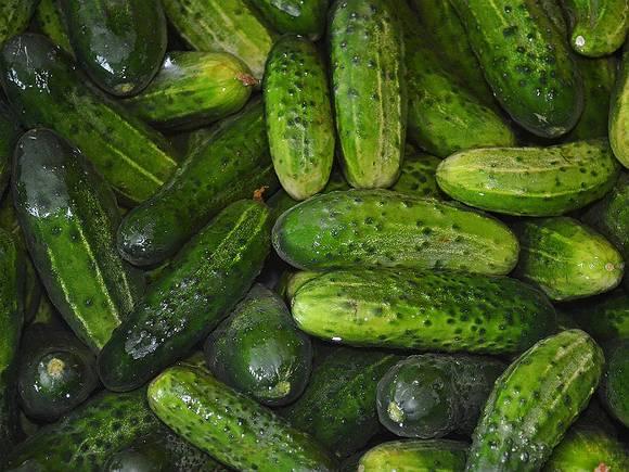 Два случая заболевания ботулизмом вызваны употреблением овощных консервов