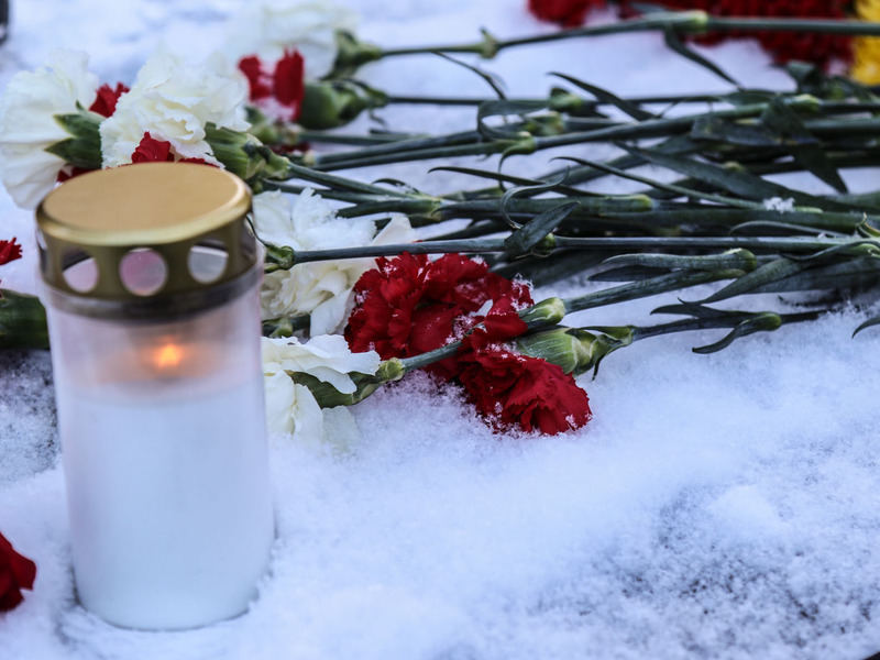 http://img.rosbalt.ru/photobank/c/5/d/2/bJRzdDjY-800.jpg