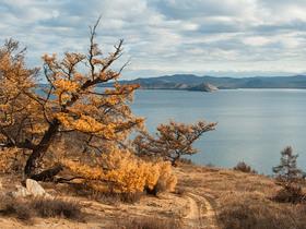 Фото с сайта baikal-1.ru