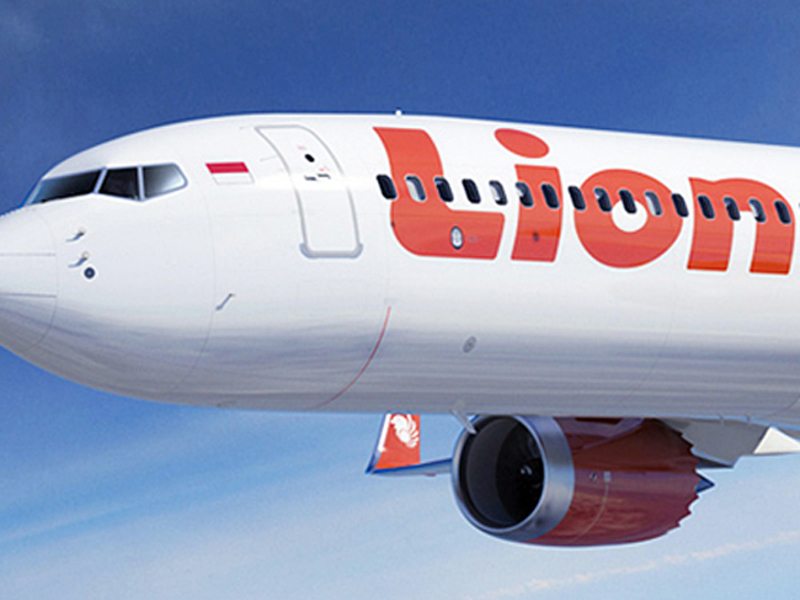 Спасатели нашли 200 фрагментов тел погибших в результате крушения Боинга-737 в Индонезии