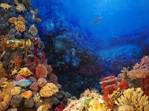 В мертвой зоне Черного моря нашли корабль, пролежавший на дне более 2400 лет