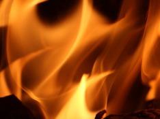 В Эстонии потушили начавшийся неделю назад пожар на военном полигоне