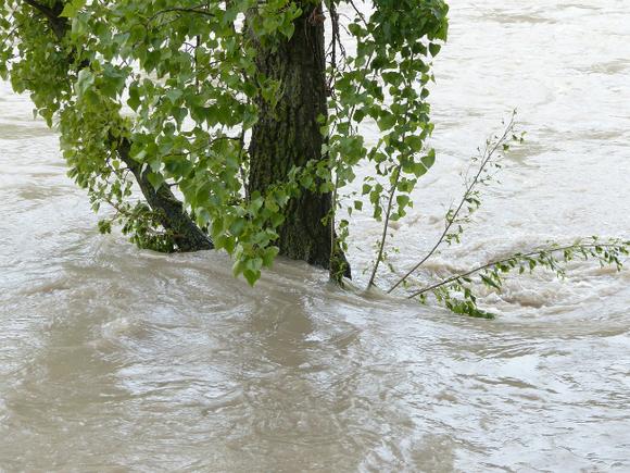 В Сочи из-за ливней затопило федеральную трассу