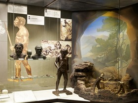 "Фото с сайта <a href=""http://www.darwinmuseum.ru/"">Государственного Дарвиновского музея</a>"