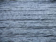 В Ленобласти девушка спасла из реки пассажирку тонущей машины