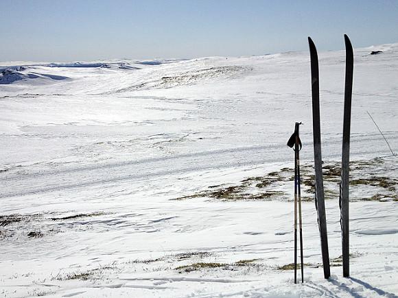 Норвежский Тронхейм готов принять финал Кубка мира полыжам вместо Тюмени
