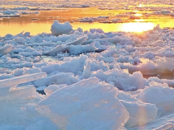 ВПодмосковье спасли женщину, провалившуюся под лед, которая решила покормить уток