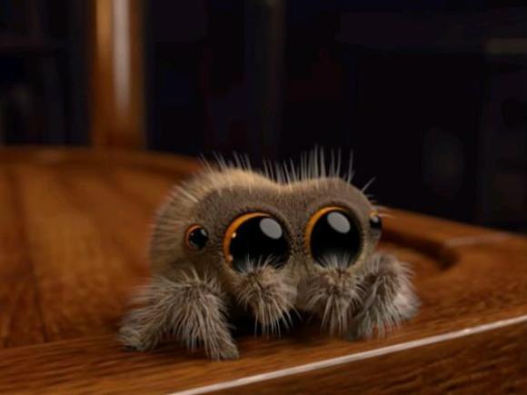 Познакомьтесь сЛукасом— привлекательным пауком, избавляющим отарахнофобии