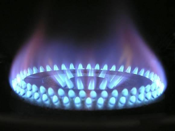 Путин подписал закон о бесплатной газовой трубе до границ участков