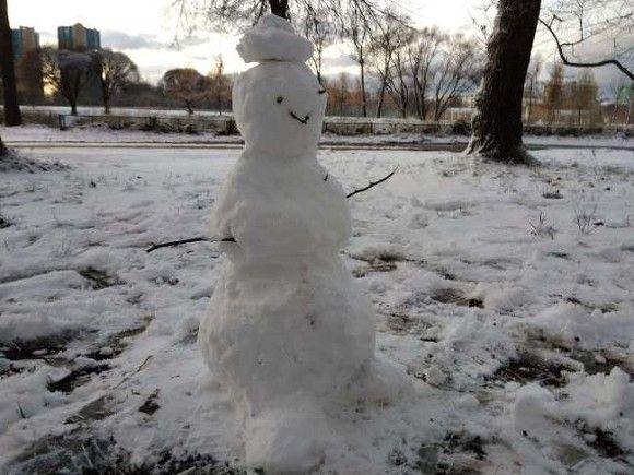 Татьянин день в Петербурге побил температурный рекорд