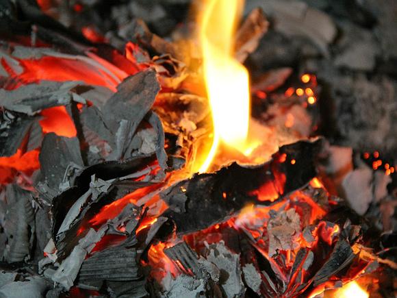 Пятеро детей погибли в уральском селе при пожаре, их мать выжила (фото)