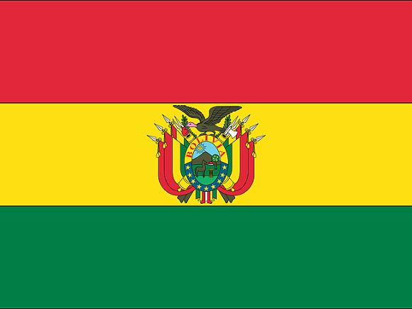 Протесты в Боливии унесли жизни 23 демонстрантов