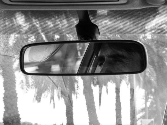 В Ленобласти пьяный водитель насмерть задавил собственную мать