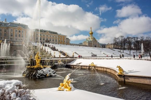 В Петербурге приговорили условно бизнесмена за многомиллионные хищения в «Петергофе»