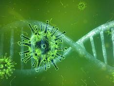 Зараженные коронавирусом появились в Северной Осетии