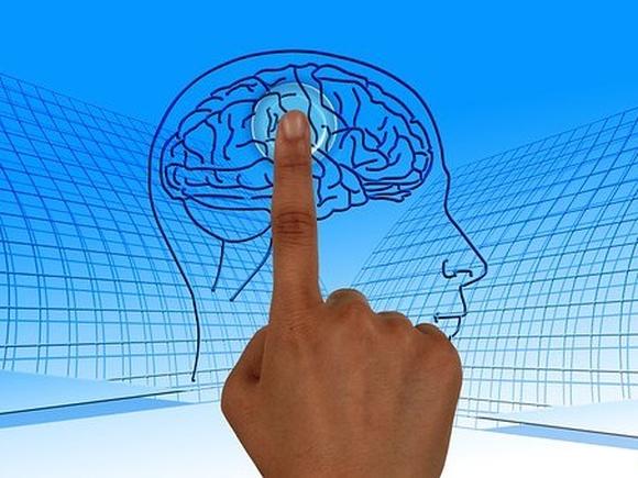 Британские ученые рассказали, как сохранять острый ум до старости