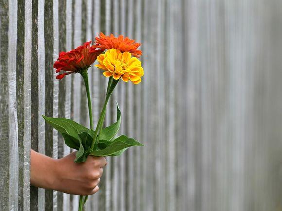 Праздник «не про цветы, весну и женственность»— в Россию пришло 8Марта