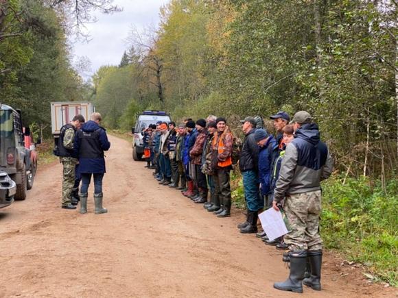 Тело пропавшего в Тверской области подростка нашли в лесу